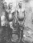 Forced labour, Anglo-Belgian India Rubber Company, Belgian Congo 1907